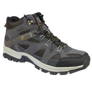 παπούτσι kapriol
